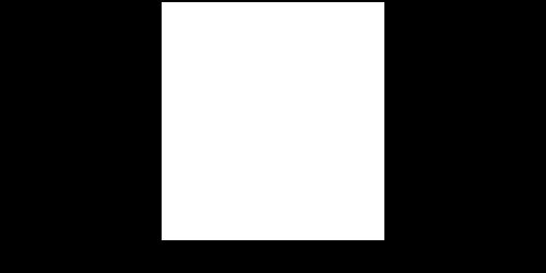 Stevens Institute